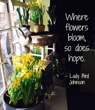 Garden Quotes , Burlington Garden Center